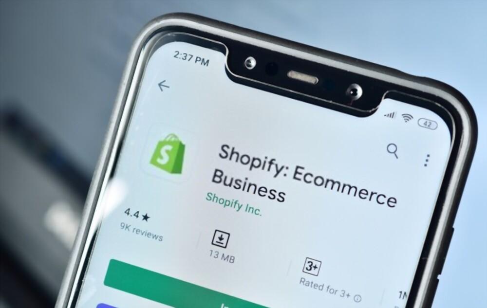 Successful Shopify Website
